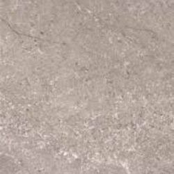 NATURE-GRIS-60x60-cm-R34-BRILLO
